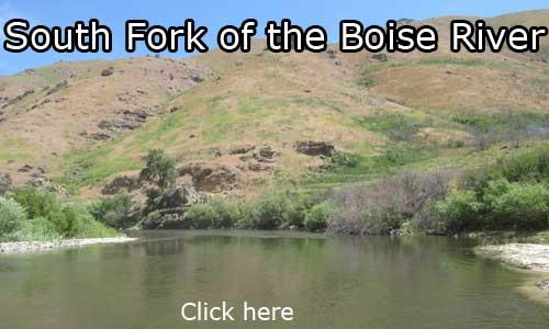 Forest camp south fork boise river tim bondy for Boise river fishing